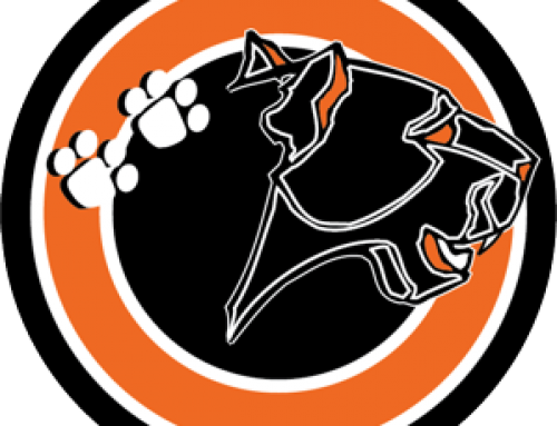 East Pennsboro Area School District Official Logo